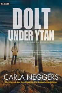 Dolt under ytan (e-bok) av Carla Neggers