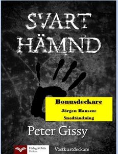 Svart hämnd - Snedtändning (e-bok) av Peter Gis