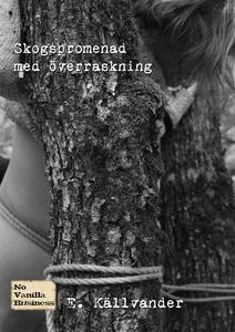 Skogspromenad med överraskning (e-bok) av E. Kä
