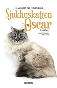 Sjukhuskatten Oscar : En vanlig katt med en ova