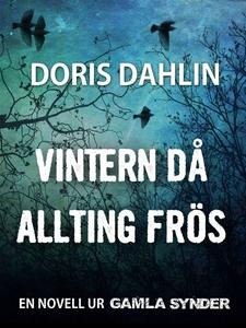 Vintern då allting frös (e-bok) av Doris Dahlin