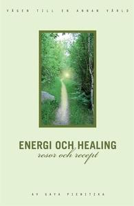 Energi och healing, resor och recept (e-bok) av