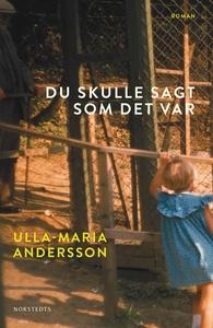 Du skulle sagt som det var (e-bok) av Ulla-Mari