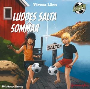 Luddes salta sommar (ljudbok) av Viveca Lärn