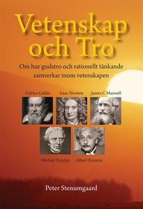 Vetenskap och Tro (e-bok) av Peter Stenumgaard