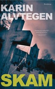 Skam (e-bok) av Karin Alvtegen