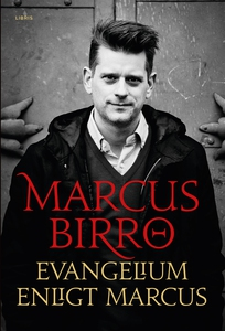 Evangelium enligt Marcus (e-bok) av Marcus Birr