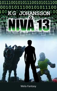 Nivå 13 (e-bok) av KG Johansson