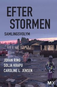 Efter stormen (e-bok) av Johan Ring, Solja Krap