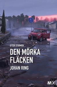 Den mörka fläcken : Efter stormen (e-bok) av Jo
