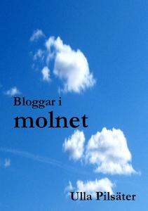 Bloggar i molnet (e-bok) av Ulla Pilsäter