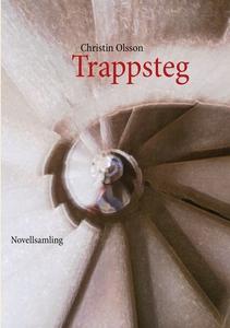 Trappsteg (e-bok) av Christin Olsson