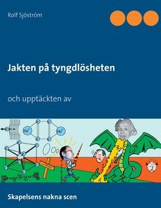 Jakten på tyngdlösheten (e-bok) av Rolf Sjöströ
