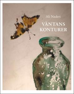 Väntans konturer (e-bok) av Ali Naderi