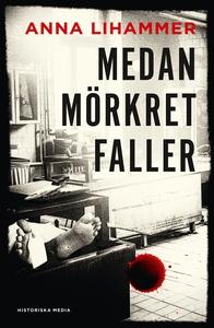 Medan mörkret faller (e-bok) av Anna Lihammer