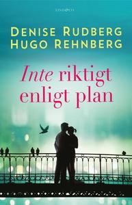Inte riktigt enligt plan (e-bok) av Denise Rudb
