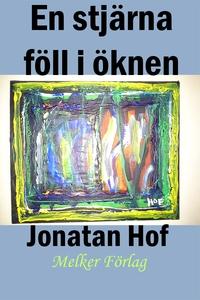 En stjärna föll i öknen (e-bok) av Tomas Petter