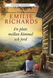 En plats mellan himmel och jord (e-bok) av Emil