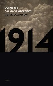 1914 : Vägen till första världskriget (e-bok) a