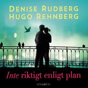 Inte riktigt enligt plan (ljudbok) av Denise Ru