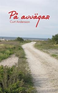 På avvägar (e-bok) av Curt Andersson