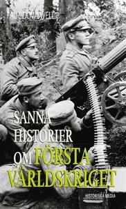 Sanna historier om första världskriget (e-bok)