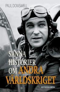Sanna historier om andra världskriget (e-bok) a