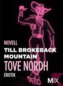 Till Brokeback Mountain : erotisk novell