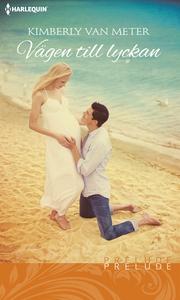 Vägen till lyckan (e-bok) av Kimberly Van Meter