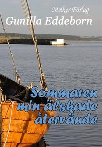 Sommaren min älskade återvände (e-bok) av Gunil