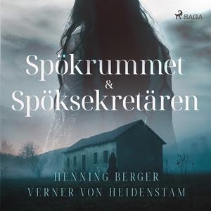 Spökrummet & Spöksekretären (ljudbok) av Verner