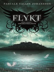 Flykt (e-bok) av Pascale Vallin Johansson