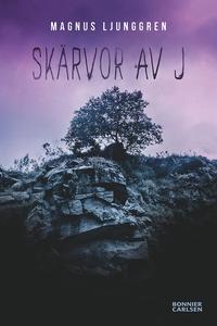 Skärvor av J (e-bok) av Magnus Ljunggren