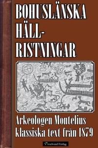 Bohuslänska hällristningar (e-bok) av Oscar Mon