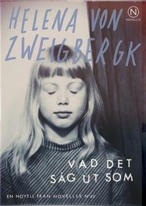 Vad det såg ut som (e-bok) av Helena von Zweigb