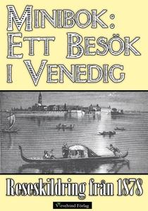 Minibok: Ett besök i Venedig 1878 (e-bok) av Ad