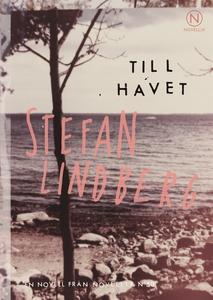 Till havet (e-bok) av Stefan Lindberg