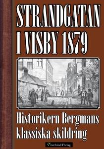 Strandgatan i Visby 1879 (e-bok) av Karl Johan