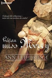Gåtan miss Merry (e-bok) av Ann Lethbridge