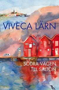 Södra vägen till Saltön (e-bok) av Viveca Lärn