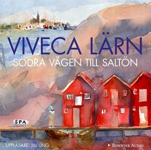 Södra vägen till Saltön (ljudbok) av Viveca Lär