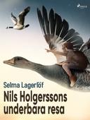 Nils Holgerssons underbara resa
