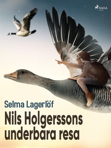 Nils Holgerssons underbara resa (e-bok) av Selm