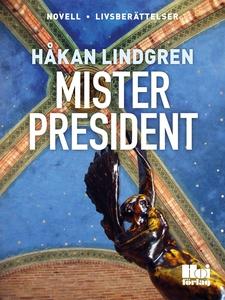 Mister President (e-bok) av Håkan Lindgren