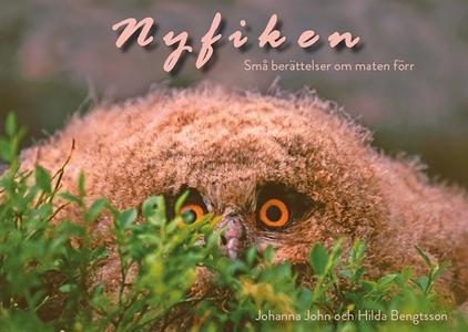Nyfiken (e-bok) av Johanna John, Hilda Bengtsso