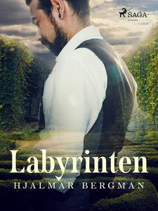Labyrinten (e-bok) av Hjalmar  Bergman