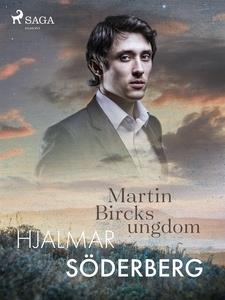 Martin Bircks Ungdom (e-bok) av Hjalmar Söderbe