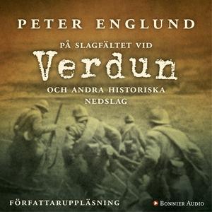 På slagfältet vid Verdun (ljudbok) av Peter Eng