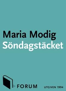 Söndagstäcket : En roman om underkastelse och f