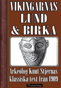 Vikingatidens Lund och Birka (e-bok) av Knut St